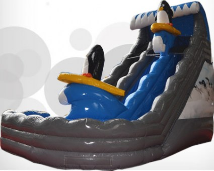 Pinguin water slide33