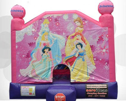 Pink Princess Bouncer